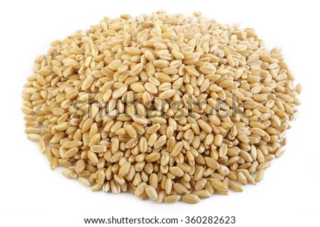 pearl barley grains on white background - stock photo