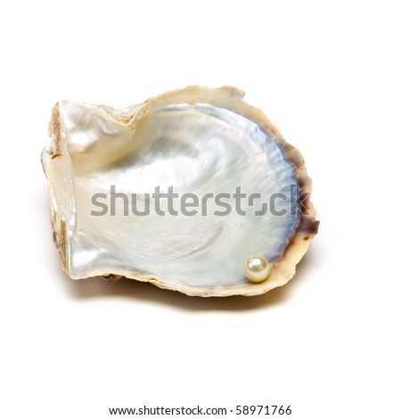 Pearl resting on open oyster shell to depict wealth concept isolated against white. - stock photo