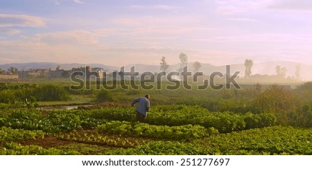 peasant is taking care of his field in chinese city jianshui. - stock photo
