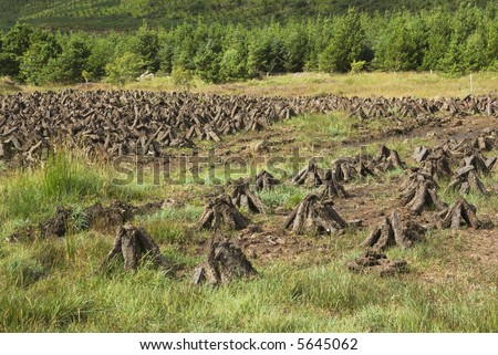 Peat bog in County Mayo, Ireland, with stacks of turf drying in the sun - stock photo