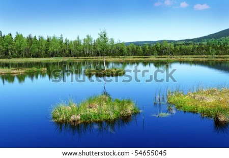 peat lake - morass in reservation - stock photo