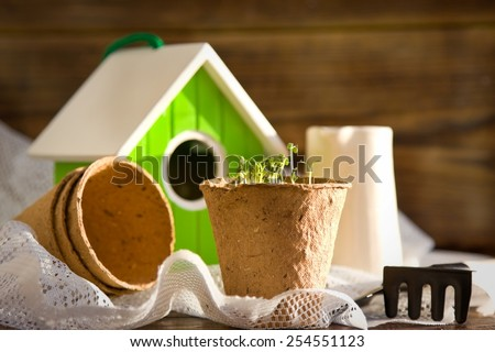 Peat pots, bird-house, seedlings and garden tools on wood background - stock photo