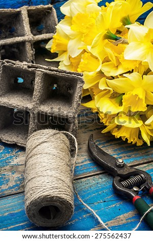 peat pots,gardening secateurs and buds of yellow daffodils - stock photo