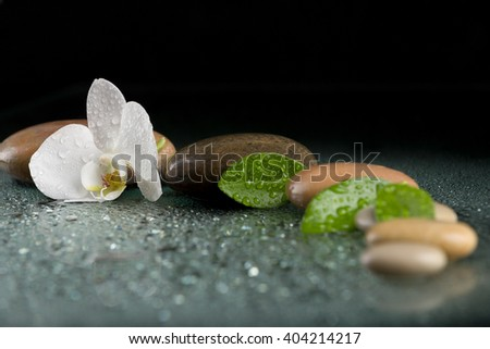 pebble stones and green leaf with water drop and orchid flower, ZEN stone, on black, spa tranquil scene concept with reflection - stock photo