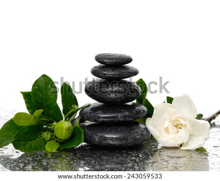 pebbles and a white flower on wet background - stock photo