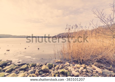 Pebbles and reeds by a frozen lake in the winter - stock photo