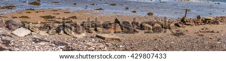 Pebbles and seashells on a beach in panorama - stock photo