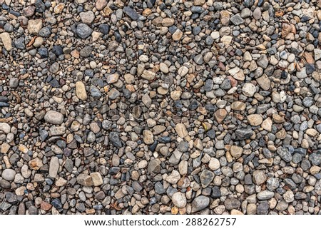 Pebbles background with dry leafs and sprigs. - stock photo