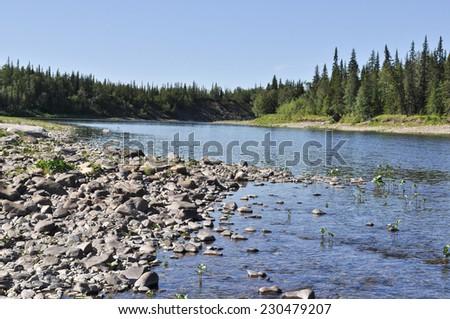 Pebbles on the banks of Ural taiga rivers. Polar Ural, Komi Republic, Russia. - stock photo