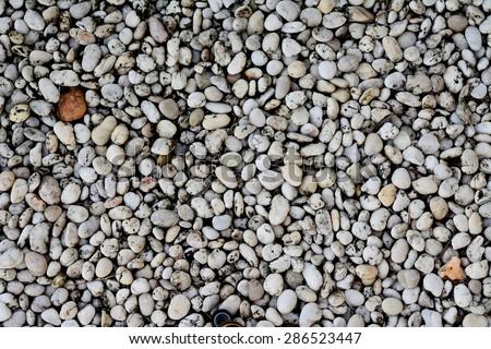 pebbles on the seashore background - stock photo