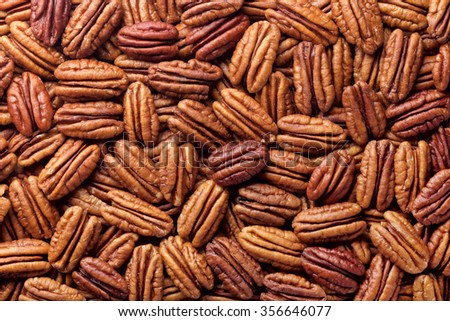 pecan nut - stock photo