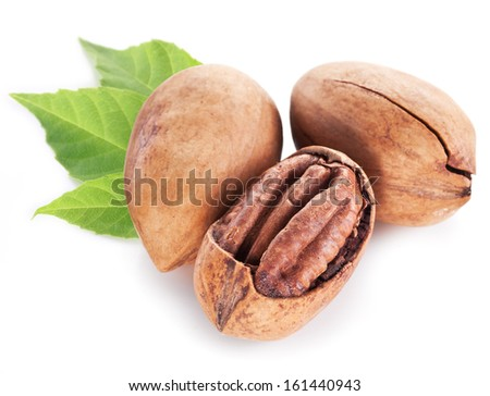 Pecan nuts with leaves isolated on a white background. - stock photo