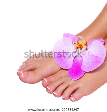 Pedicure with orchid flower isolated. Female feet with french manicure. Foot care. Spa - stock photo