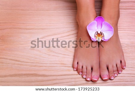 Pedicure with pink orchid flower on wooden background. Beautiful female feet with french manicure. Foot care. Spa - stock photo