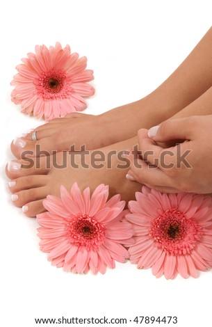 Pedicured feet and pink daisies - stock photo