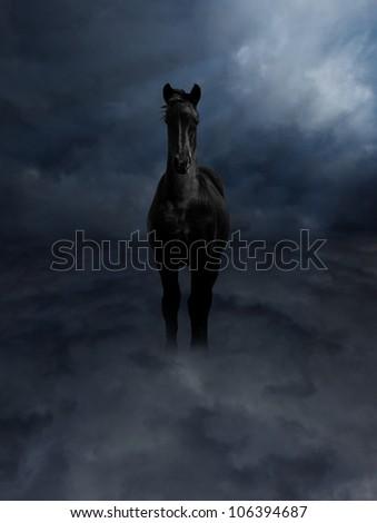 Pegasus Black Steed Standing in Dark Storm Clouds - stock photo