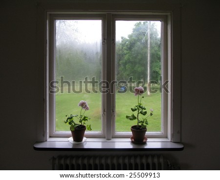 Pelargonias on a window sill a rainy summer day - stock photo