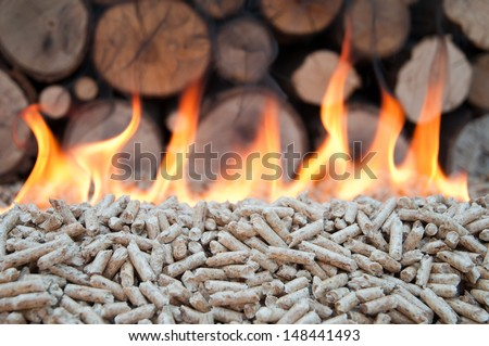 Pellet in flames- stock photo - stock photo