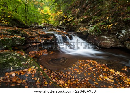 Pennsylvania Ricketts Glen State Park Allegheny Mountain Waterfall Autumn Scenic - stock photo