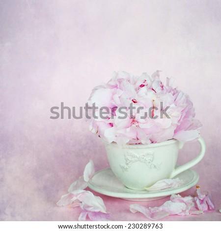 Peonies flower  - stock photo