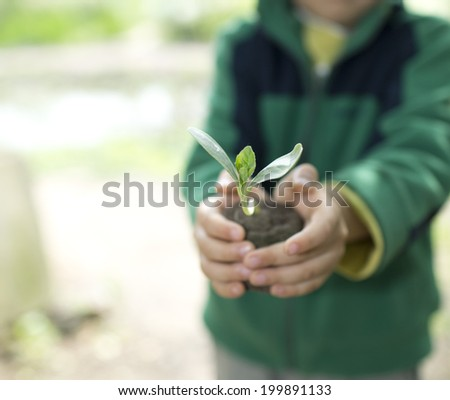 People hands holdings a little green plant  - stock photo