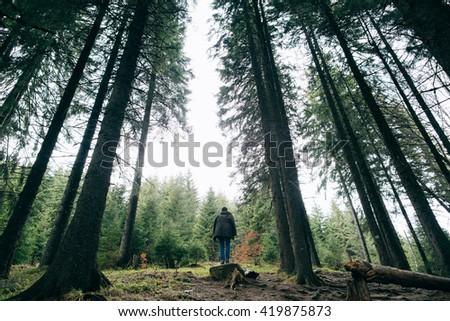 People hiker walking in the Misty mountain forest. Green pine forest landscape. Mountain trek - stock photo