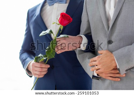 people, homosexuality, same-sex marriage and love concept - close up of happy male gay couple with red rose flower holding hands on wedding - stock photo