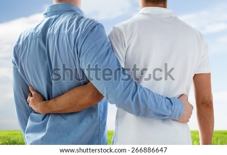 people, homosexuality, same-sex marriage, gay and love concept - close up of happy male gay couple hugging from back over blue sky and grass background - stock photo