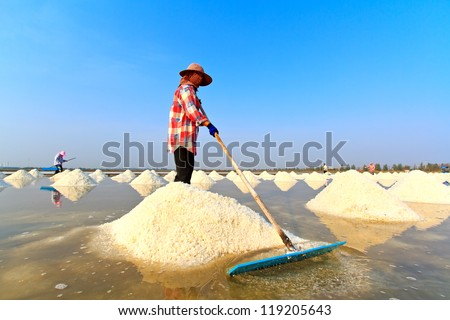 People working in the salt field - stock photo