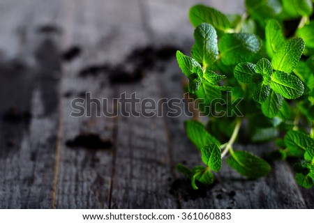 Pepper mint on old wood background - stock photo