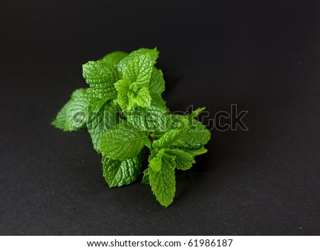 peppermint on black - stock photo