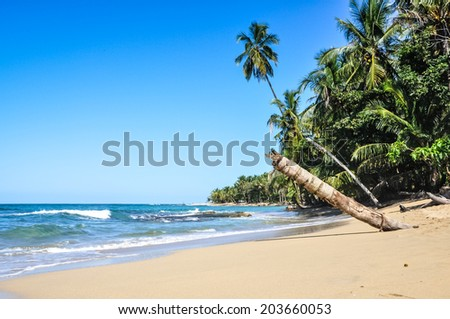 Perfect beach next to a unspoiled jungle at Puerto Viejo, Costa Rica. - stock photo