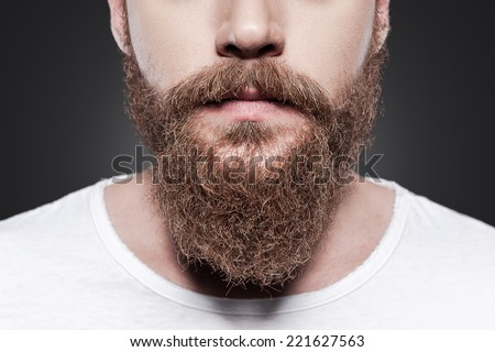 Perfect beard. Close-up of young bearded man standing against grey background - stock photo