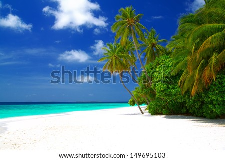 Perfect beautiful beach on Maldives - with white sand, turquoise water, green coconut palms and blue sky with white clouds.  - stock photo