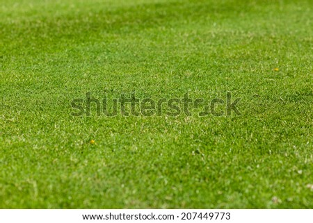 Perfect green lawn used for outdoors sports such as soccer. - stock photo