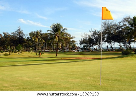 Perfect Green Shot of a beautiful green on a tropical golf course surrounded with palm trees. - stock photo
