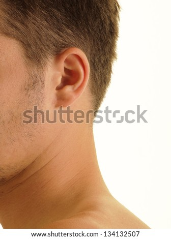 Perfect human male ear - stock photo