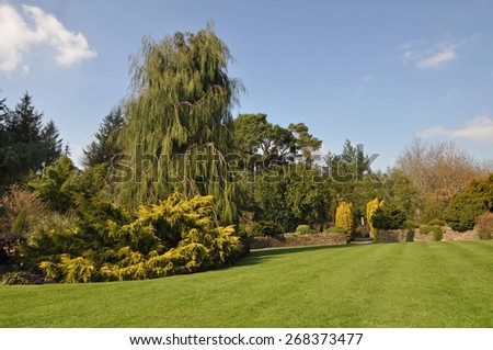 Perfect lawn within an established English country garden, boarders and mature trees and shrubs add to the flow of the garden. - stock photo