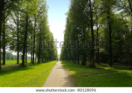Perfect straight path along the edge of a forest and meadow - stock photo