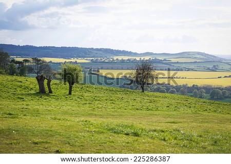 Perfect sunny spring English landscape - stock photo