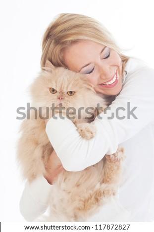 Perser Katze - stock photo