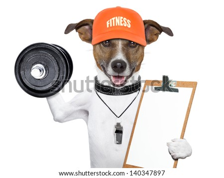 personal  trainer dog with dumbbells and a clipboard - stock photo