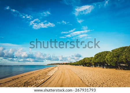 Perspective of yellow sand beach with blue sea from one side and green trees from the other side - stock photo
