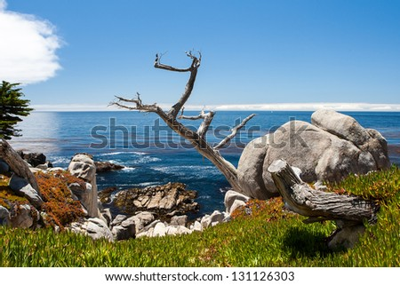 Pescadero Point at 17 Mile Drive. The 17 Mile Drive is a scenic road through Pacific Grove and Pebble Beach, in Big Sur, Monterey, CA. - stock photo