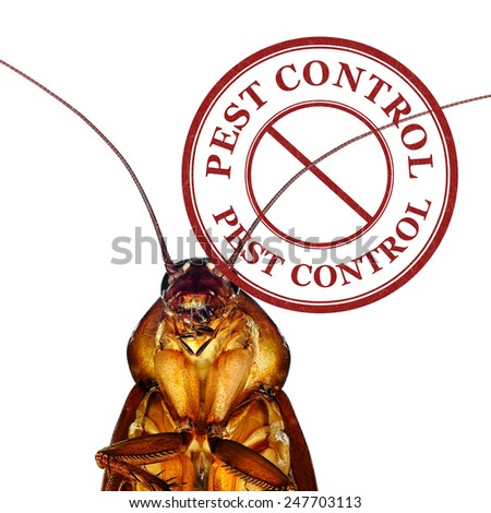 Pest control stamp with cockroach on white - stock photo