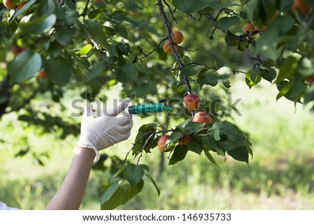 Pesticide injected in a fruit - stock photo