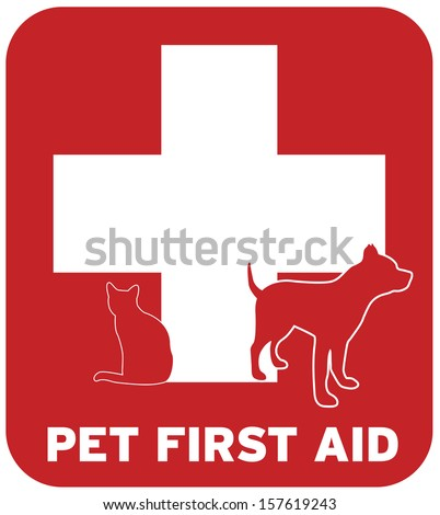 Pet First Aid - stock photo