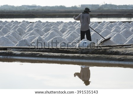PETCHABURI- MAR 14 : Workers are helping to transport salt from salt field. Ban Laem, Phetchaburi, Thailand on March 14, 2016 - stock photo