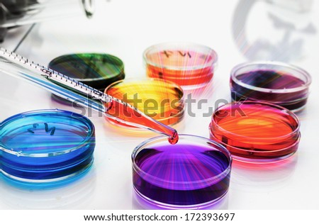 Petri dishes in the laboratory of the clinic .medical glassware - stock photo