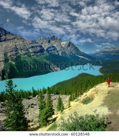 Peyto lake in Banff, Alberta, Canada, UNESCO - stock photo